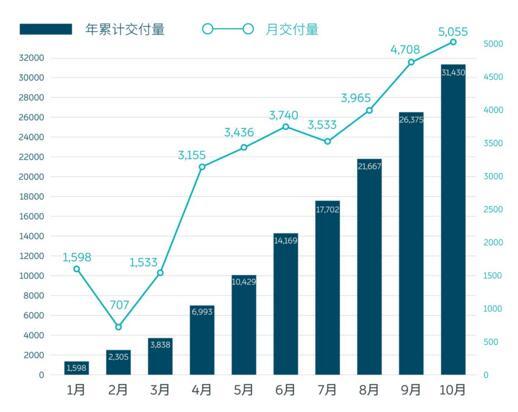 新势力前三强10月销量齐创新高,长江汽车将破产清算